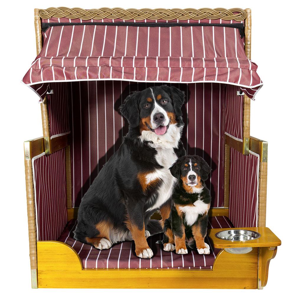 37885-Hundestrandkorb-burgund-mit-Hund-2rk0p1IzVqBzN4